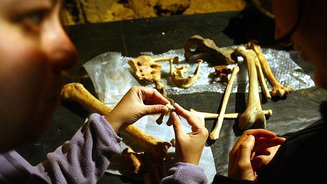 Los neandertales asturianos eran diestros