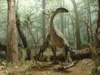 El aire que respiraban los dinosaurios tenía menos oxígeno que el actual