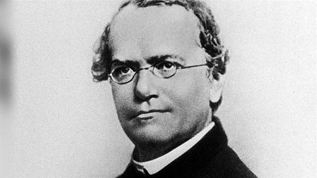¿Qué sabes de los experimentos de Mendel?