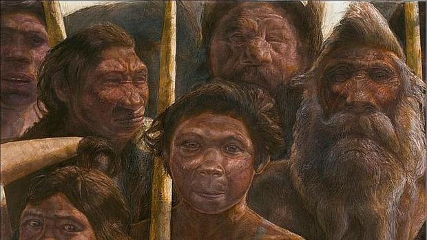 La investigación analiza la evolución de los huesos del rostro humano