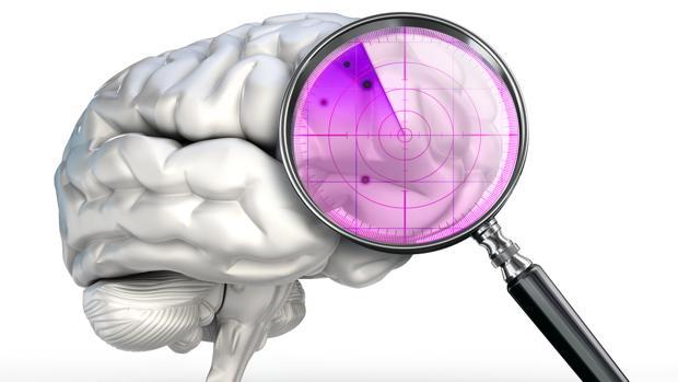 El cerebro puede ver lo que es «invisible» a los ojos