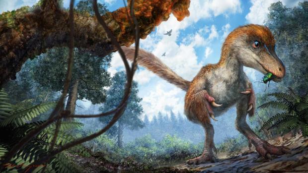 La ilustración representa un pequeño celurosaurio acercándose a una rama recubierta de resina en el suelo del bosque