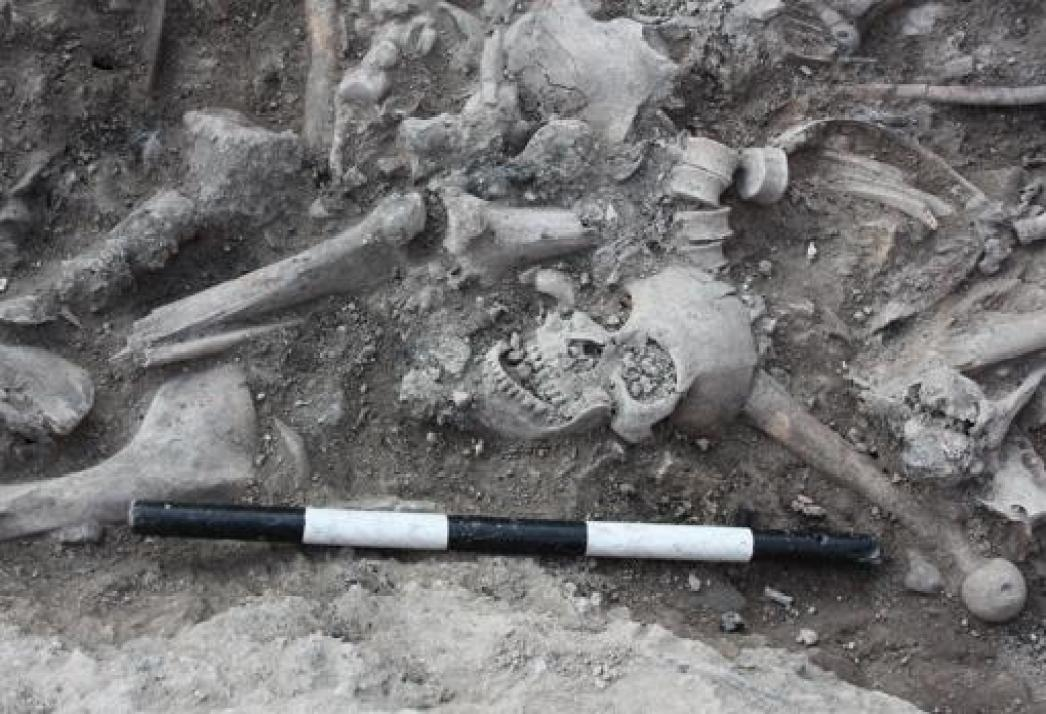 Cadáveres de cruzados apilados en una fosa en Sidón, Líbano