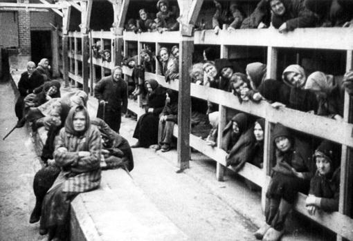 Presos del campo de concentración