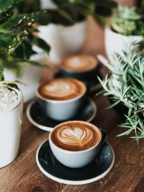 Three coffees on a table surrounded by pot plants