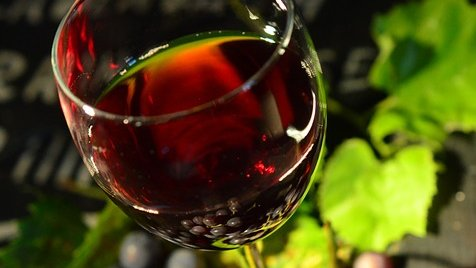 Growing grapes the Australian way has taken wine innovation to the world