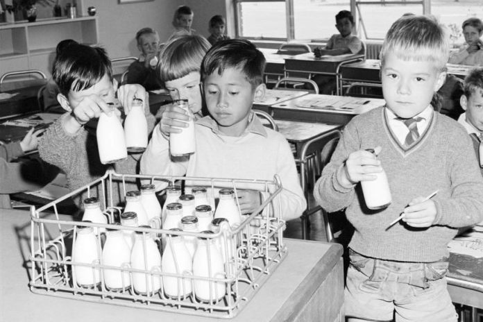 Young school children in a classroom grab milk bottles.