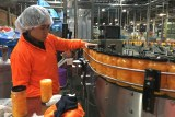 Woman in hairnet and orange safety uniform checks plastic jars of apricots on a production line before they are labelled