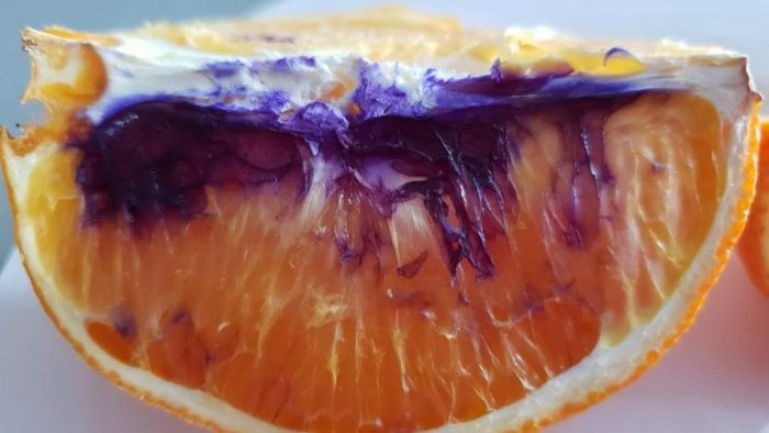 Mystery surrounds orange turning purple government