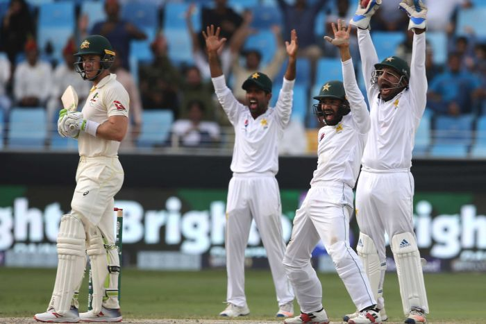 Pakistan appeals for the wicket of Tim Paine
