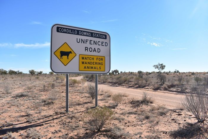 A sign welcoming travellers to Cordillo Downs Station, with a warning to watch for wandering animals.