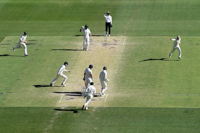 Nathan Lyon wheels away after taking wicket against India