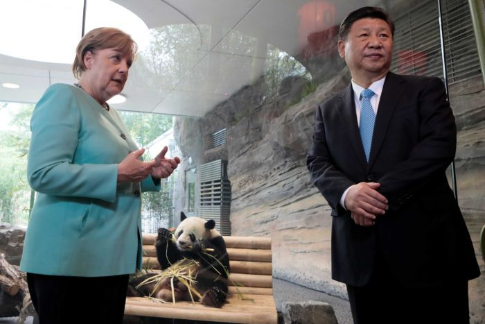 German Chancellor Angela Merkel and Chinese President Xi Jinping stand in front of a panda enclosure.