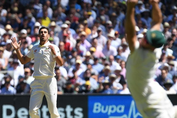 Mitchell Starc grimaces at a half-chance gone begging