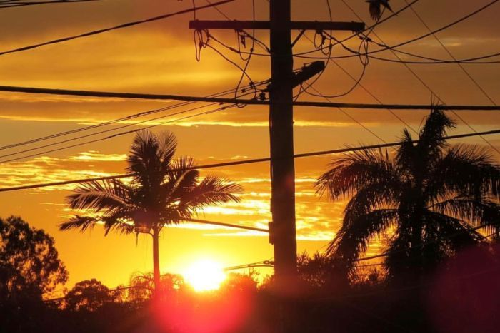 Sun shimmers through powerlines and trees at The Gap in Brisbane.