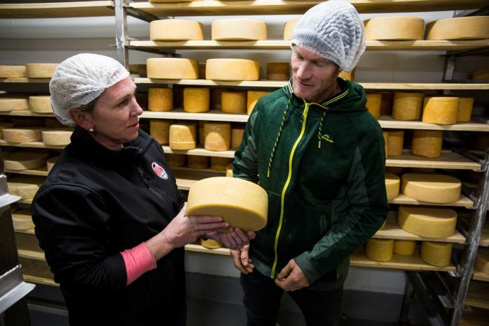 A woman and a man in hairnets inspect cheese.