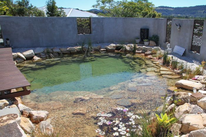 Mandy Nolan's natural pool looks like a water hole.