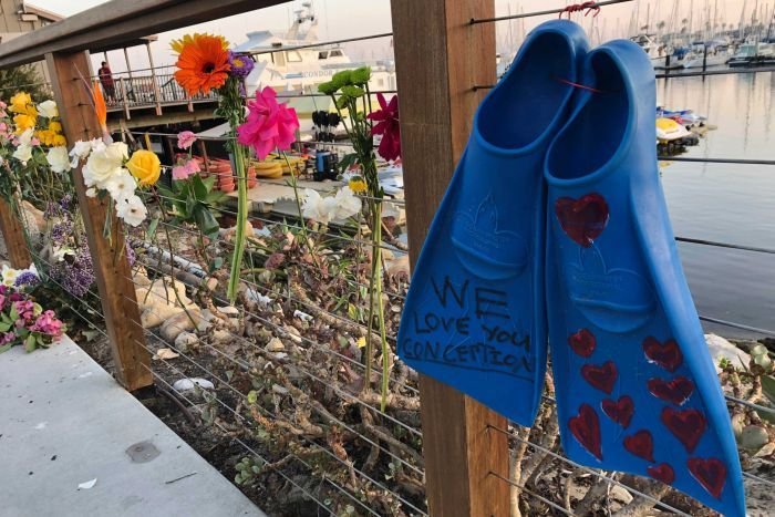 "A pair of blue flippers tied to a fence with ""we love you Conception"" written on them. Flowers are also hung on the fence."