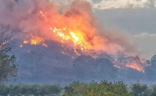 Six Homes Lost In Northern Nsw As Bushfires Continue To