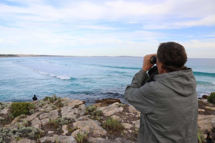 A woman stands on a cliff looking at a bay through binoculars.