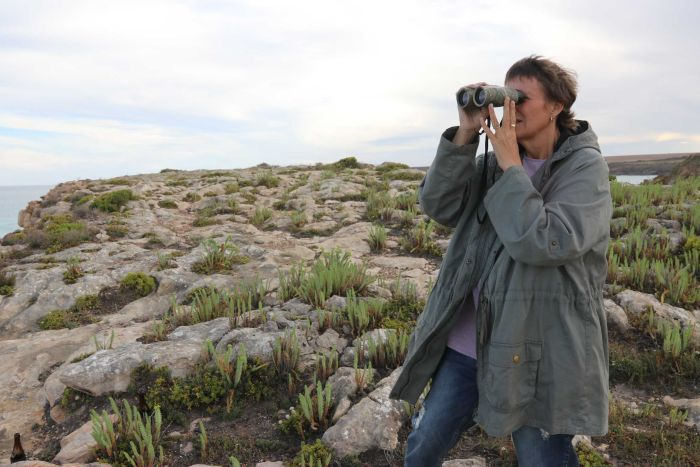 A woman stands on a cliff looking through binoculars.