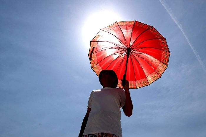 A person holding a parasol with the sun behind them