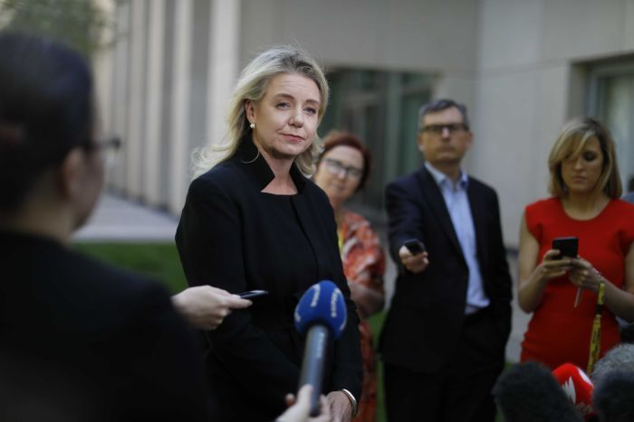 Bridget McKenzie stands in a courtyard surrounded by journalists and microphones
