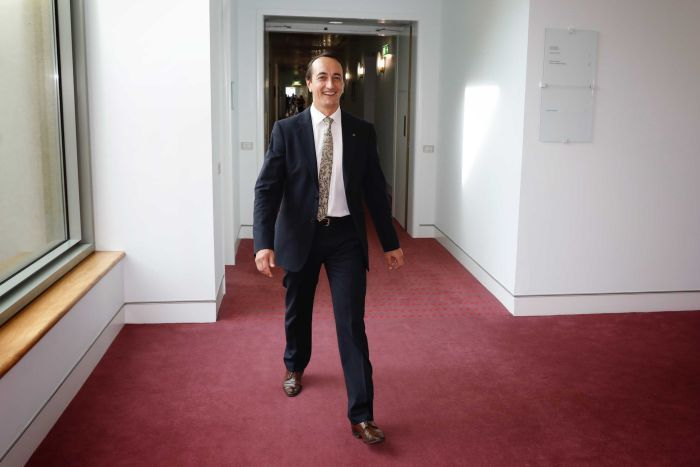 Dave Sharma walks down a red-carpeted hallway at Parliament House