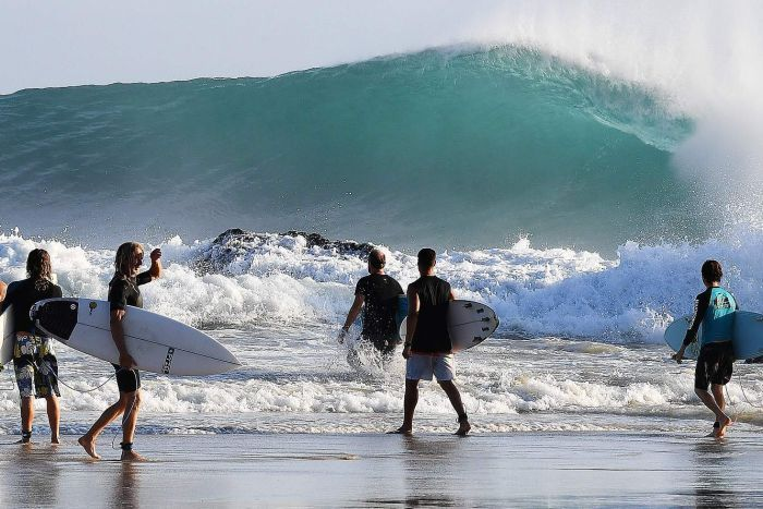 Surfers enter the water during large surf conditions at Snapper Rocks.