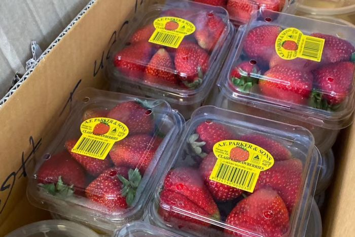 A close up shot of several punnets of fresh strawberries