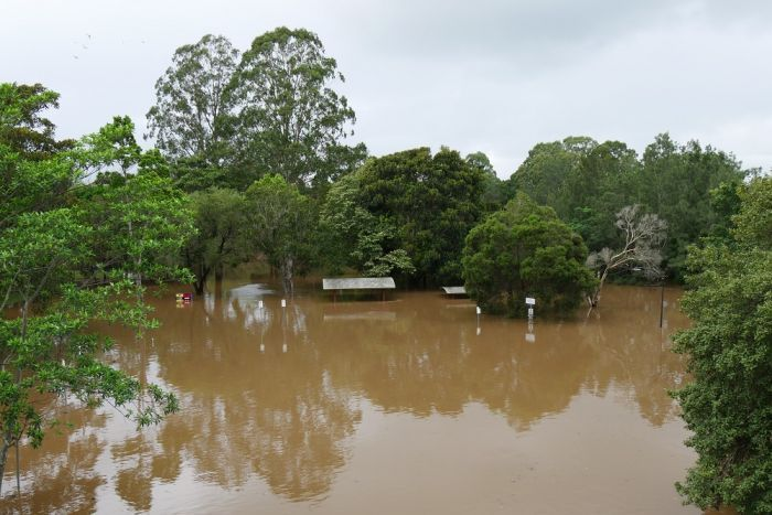 The roofs of public shelters peek through floodwaters in a Lismore park.
