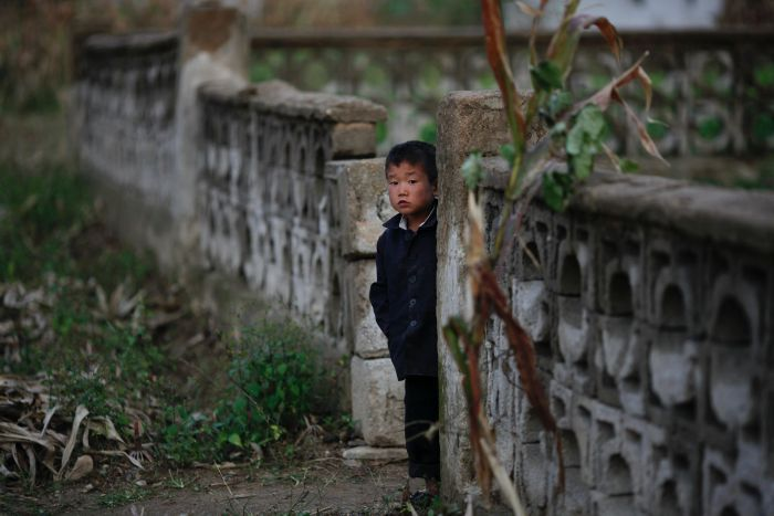 A young North Korean boy looks from behind a concrete wall around his house.