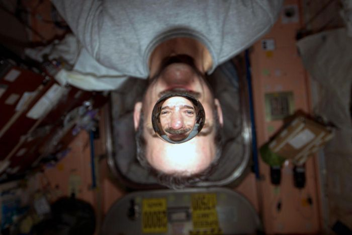 Astronaut Chris Hadfield in space