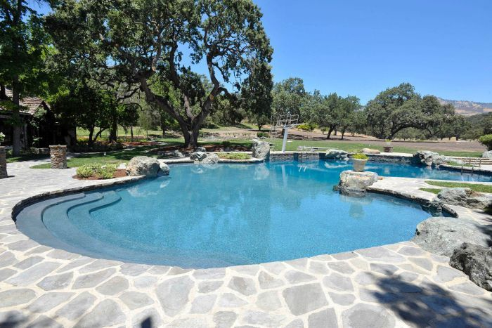 A general view of a swimming pool at Michael Jackson's Neverland Ranch