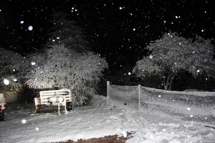 Snow Falling At Night Wallpaper Thick Snow Blankets Parts Of Southern Queensland In What