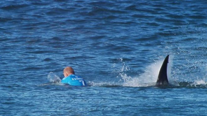 Mick Fanning escapes shark attack during surf tournament
