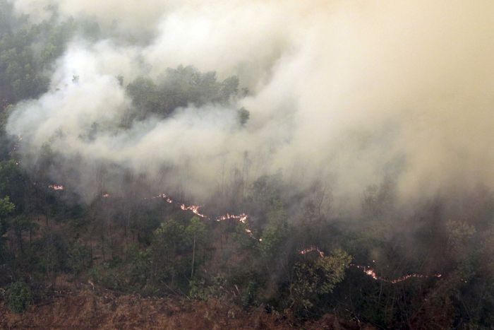 Thick smoke rises as a fire burns in a forest at Ogan Komering Ilir Regency, South Sumatra