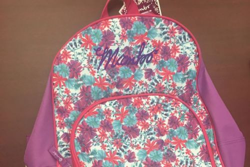 Backpack similar to one used by suspected murder victim 12yo Tiahleigh Palmer
