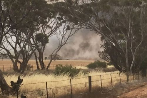 Smoke is visible across a paddock from a bushfire in the Pinery/Mallala area
