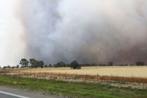 Dark smoke rises from a bushfire in the Pinery Mallala area north of Adelaide