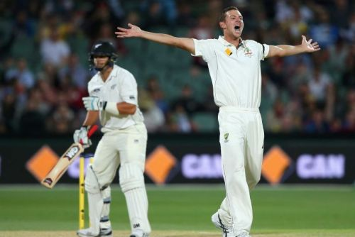 Josh Hazlewood appeals for Ross Taylor's wicket