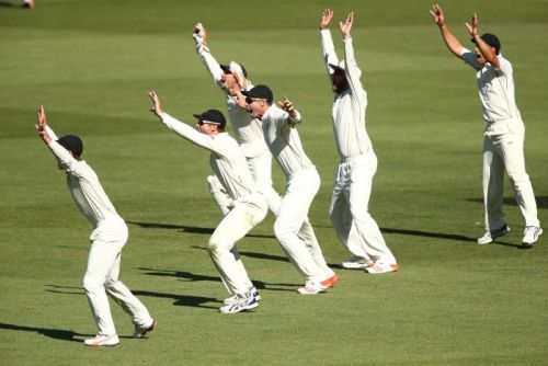 New Zealand players appeal at Adelaide Oval