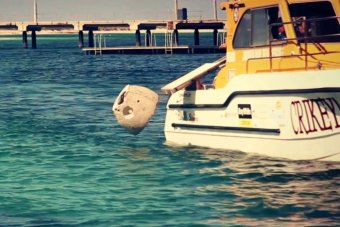 Ashes inside an artificial reef ball are dropped into the Indian Ocean at Jurien Bay in WA.