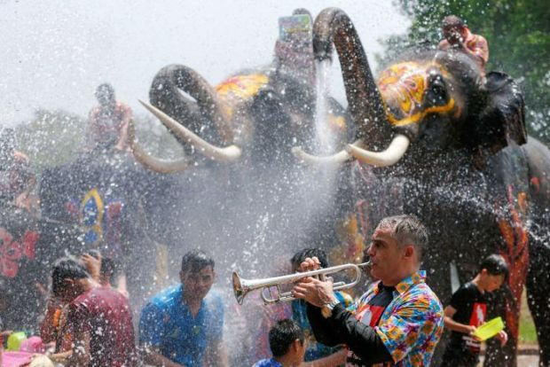 Man plays trumpet in foreground as elephants spray water in the background in a large crowd