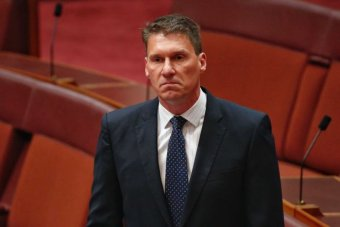 Cory Bernardi addresses the senate chamber