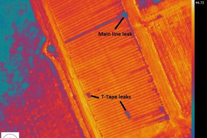 An infrared map highlights a main line leak and tap leaks.
