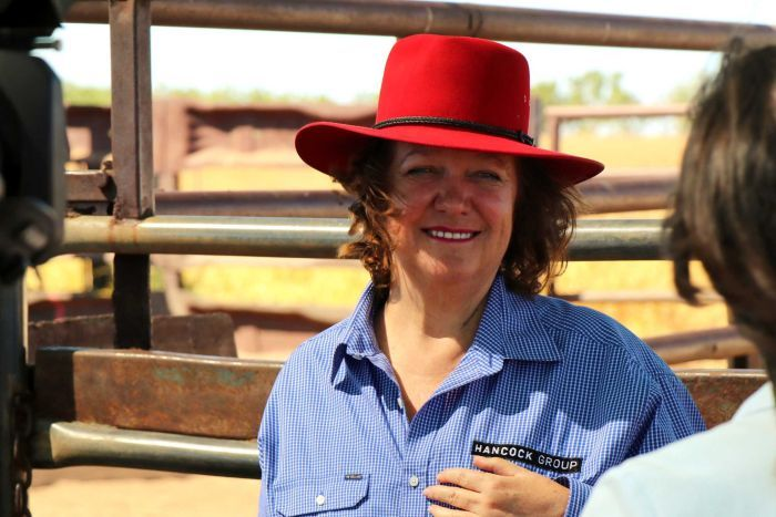 Gina Rinehart is Australia's third-largest cattle producer.