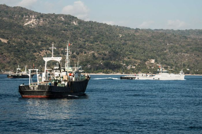 The Sea Shepherd's Ocean Warrior ship is pictured near three other vessels.