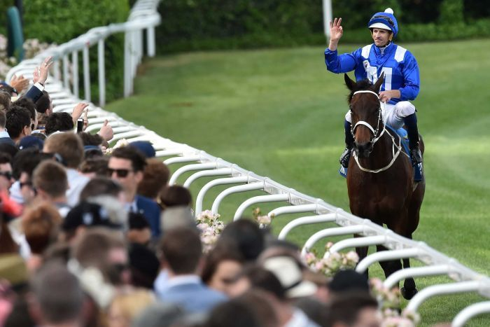 Hugh Bowman salutes the crowd after Winx wins the Cox Plate
