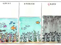 Cathy Wilcox's cartoon shows the great Barrier Reef in three columns with the third one saying 'Greef'.